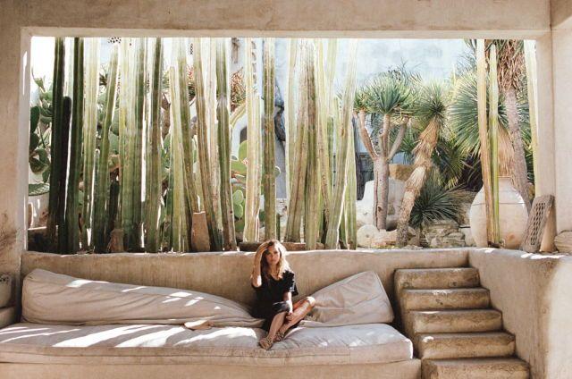 dreamiest cactus garden