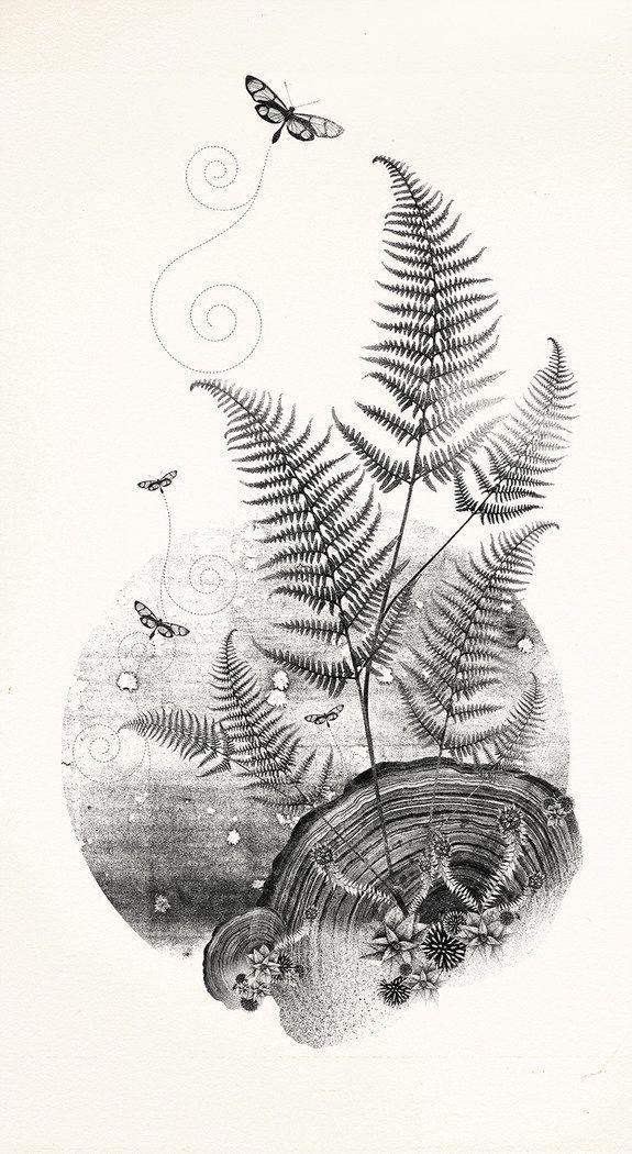Drawing The Line Tattoos Tara Mccabe : Best fern tattoo ideas on pinterest pattern design