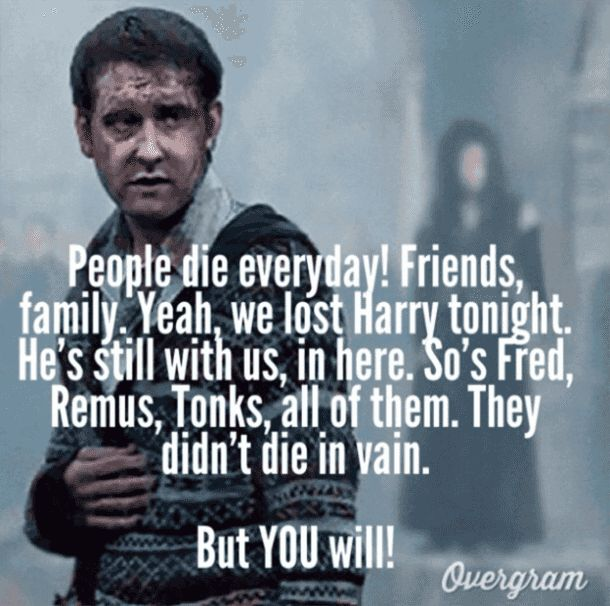 """People die every day! Friends, family. Yeah, we lost Harry tonight. He's still with us, in here. So's Fred, Remus, Tonks, all of them. They didn't die in vain. But YOU will!"" —​ Neville Longbottom (Harry Potter and the Deathly Hallows)"