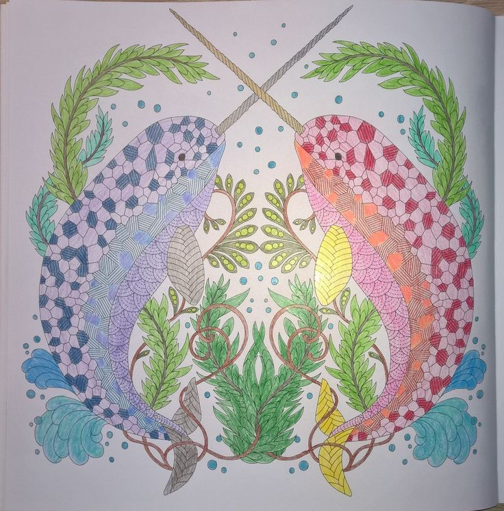Millie Marotta: Curious Creatures - Narwhals  #milliemarotta #CuriousCreatures #milliemarottabooks #colouringbooks #colouringforadults #adultcolouring #adultcoloring #stressfree #relaxing #blending