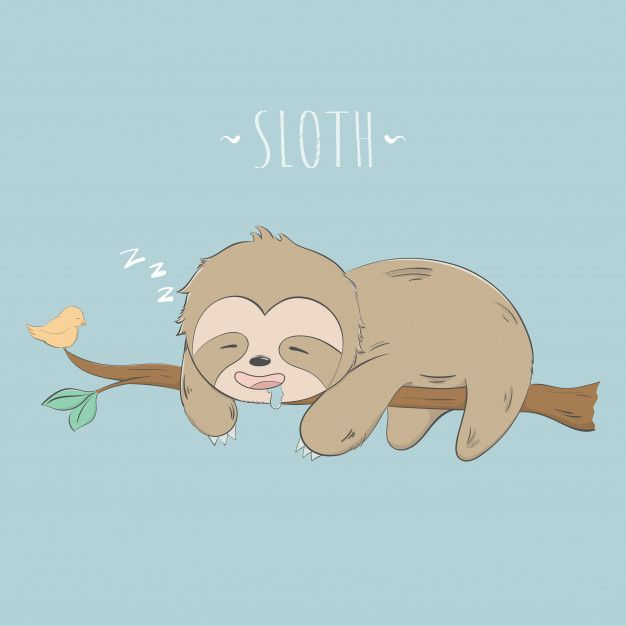 Pin By Stacy On Toddler Room Sloth Drawing Cute Cartoon Drawings Cute Sloth Pictures