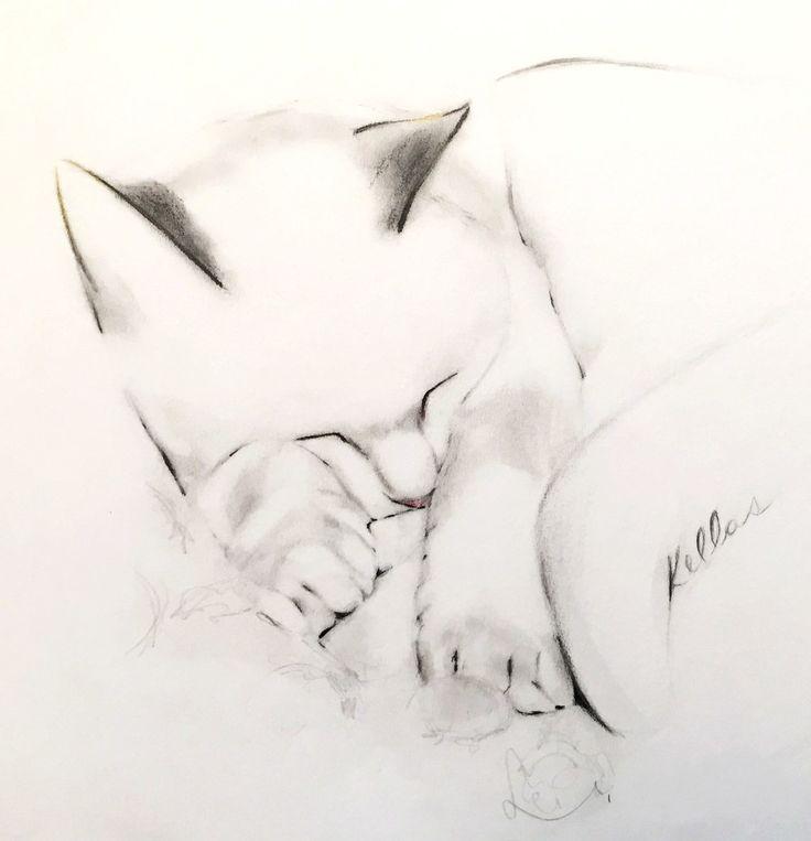 Kellas Campbell Art