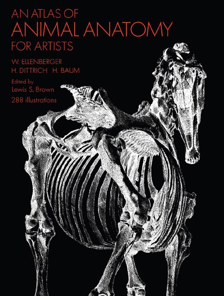 animal anatomy books for artists