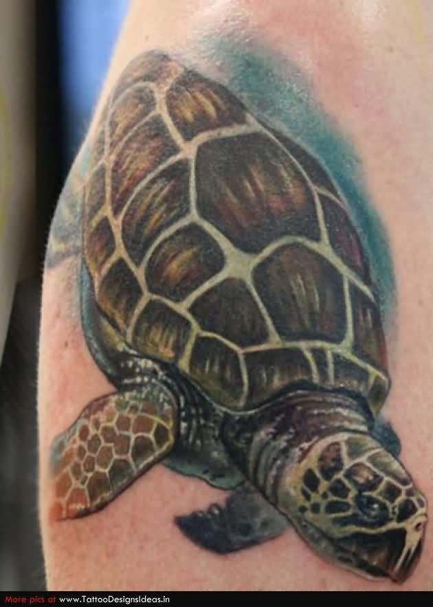 36 besten scary turtle tattoo bilder auf pinterest be ngstigende tattoos sch ne t towierungen. Black Bedroom Furniture Sets. Home Design Ideas
