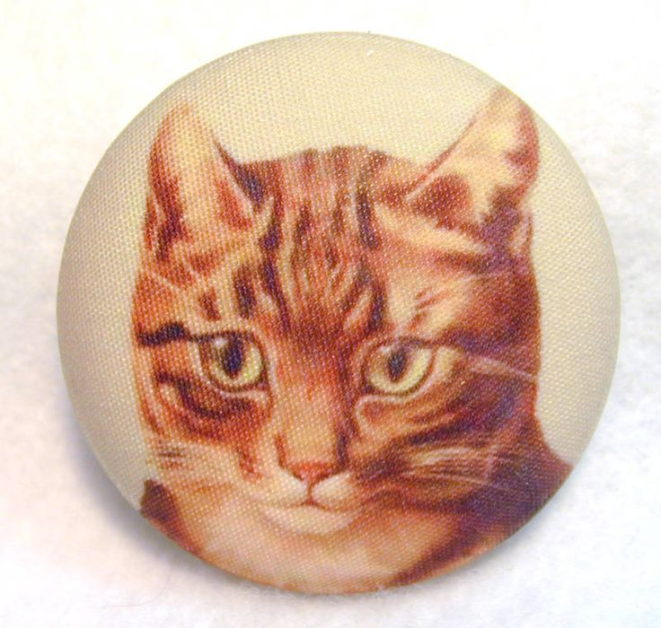 Tabby Cat Face  Button Hand Printed Fabric LgSz