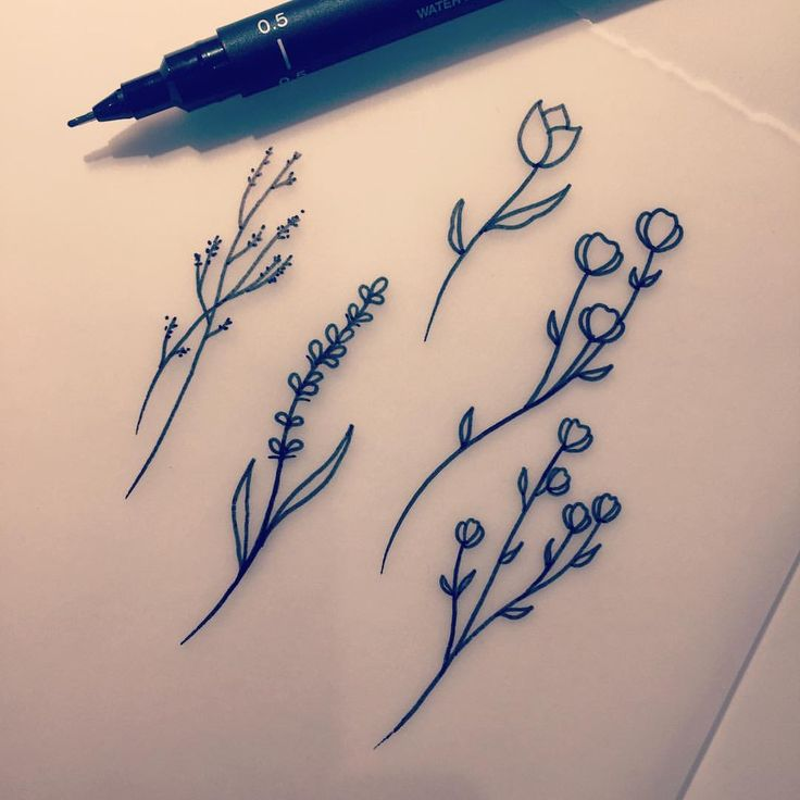 "220 Likes, 9 Comments - Stefan Salamone Tattooer (@stefansalamone) on Instagram: ""I have some little flower sprigs up for grabs! Prices will range $100-120 depending on size and…"""