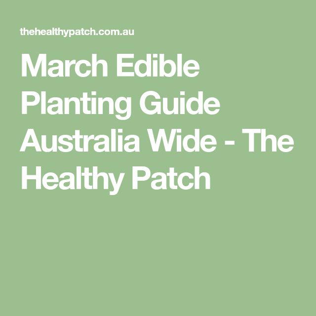 March Edible Planting Guide Australia Wide - The Healthy Patch