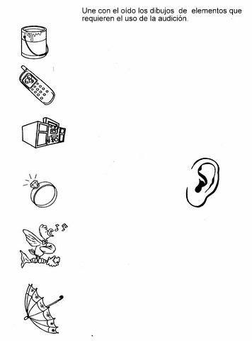 5 smyslů - sluch