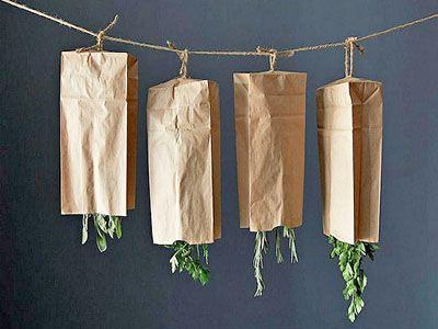 Secagem de plantas