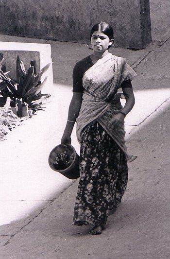 The Half-Sari