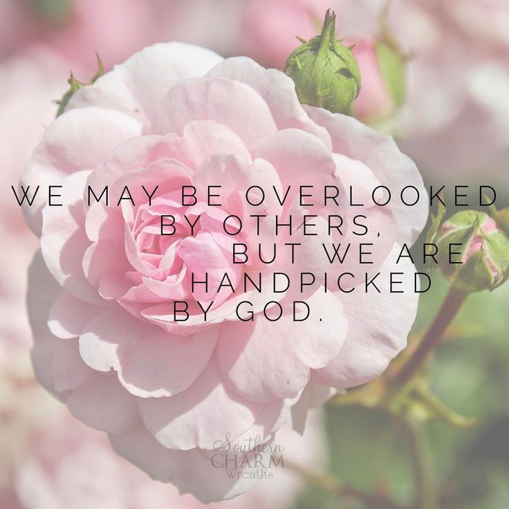 People look at the outward appearance, but the Lord looks