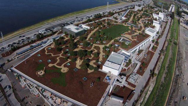 Facebook Bangun Dua Kantor Rancangan Arsitek Terkenal, Frank Gehry