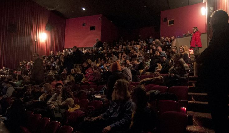 Internet Cat Video Festival draws sold out crowd to the State Theater | MLive.com