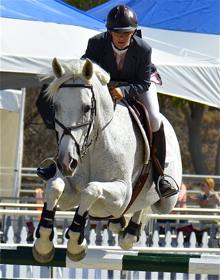 Malibu 5Star Naturals Ambassador Rider Kristin Hardin and Leonidas winning the 57th Annual Portuguese Bend Grand Prix Sept 2014