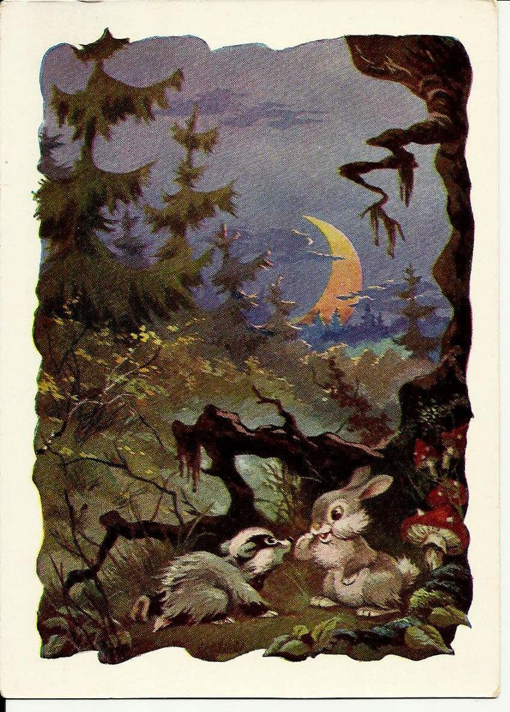 Forest Fairy Tale - Rabbit and Badger  -Vintage Russian Postcard by Znamensky 1958 unused by LucyMarket on Etsy