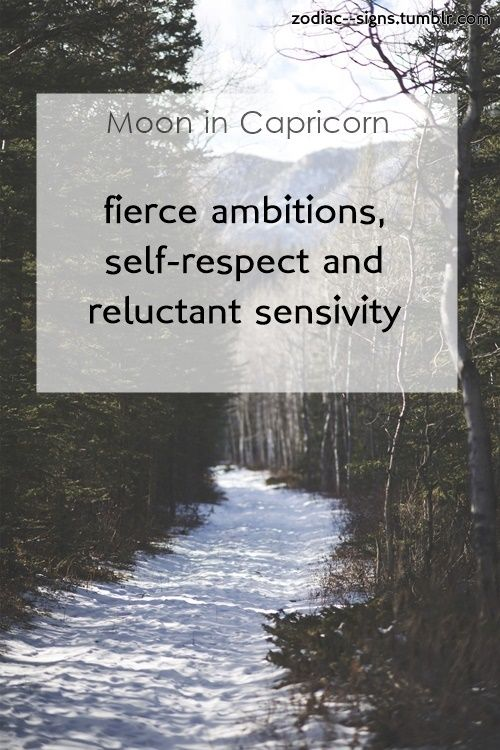 moon in capricorn.this is part of myMoon Signseries. Don't know what's your moon sign? find ithere☽