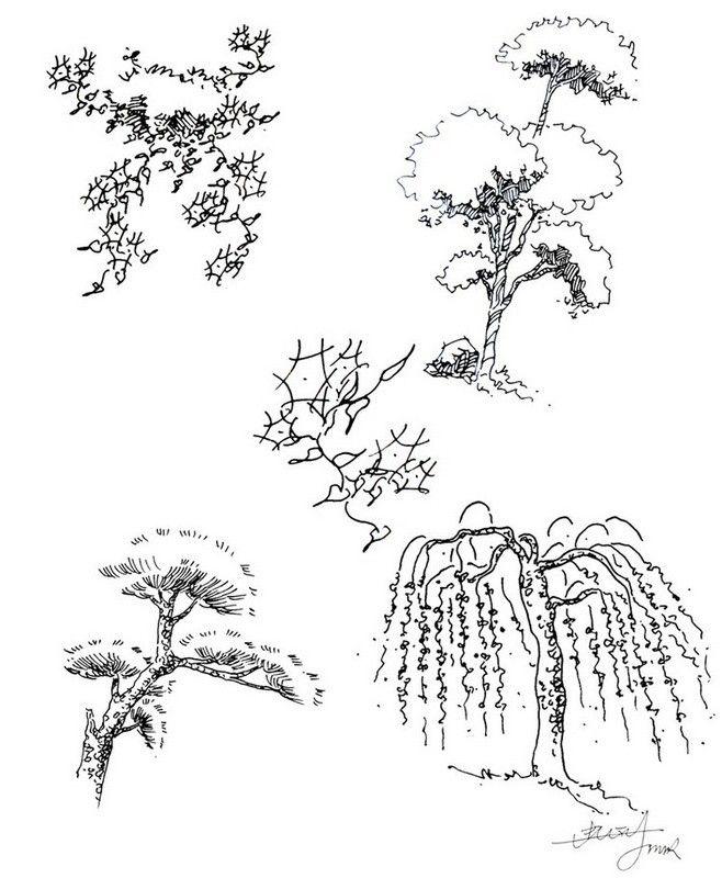 ...、...、...、松树、柳树、