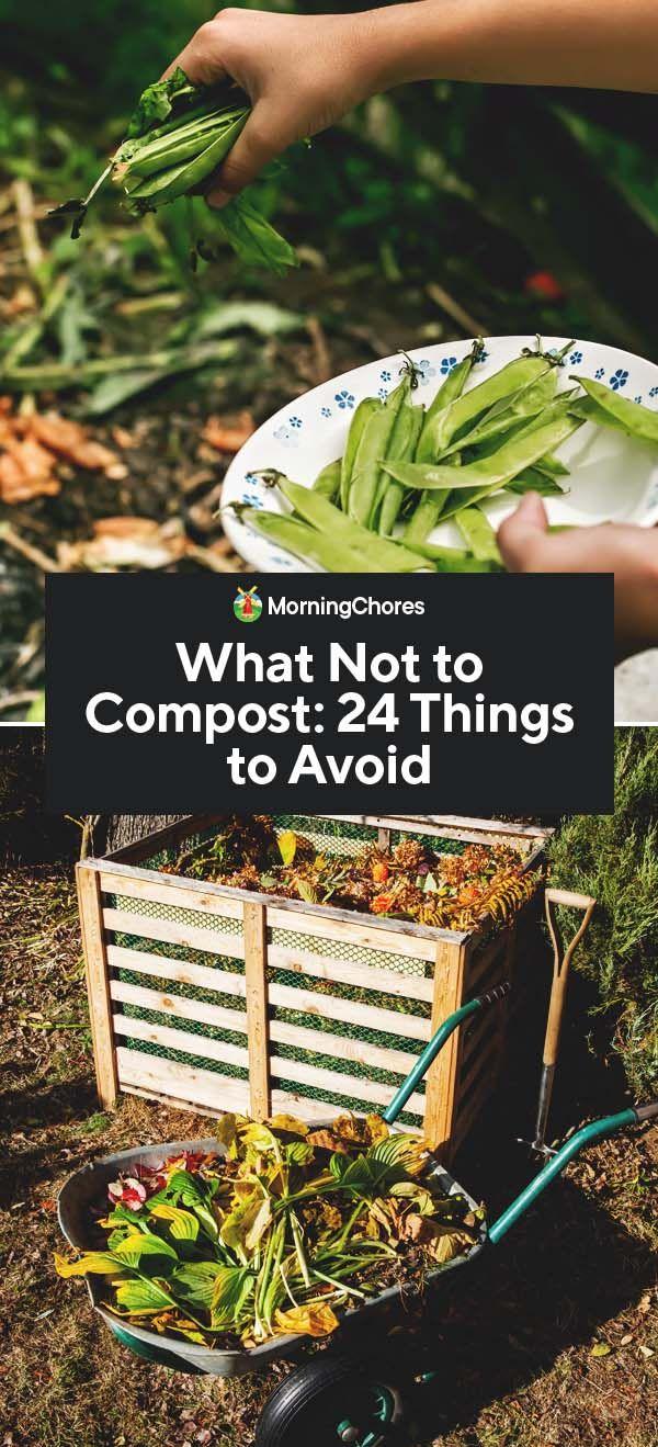c1cb13eb99d104f28c5c023a18bc369c - Is Composted Manure Safe For Vegetable Gardens