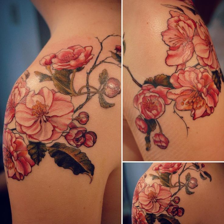 Finished apple blossoms #appleblossom #appleblossomtattoo #botanicaltattoo…