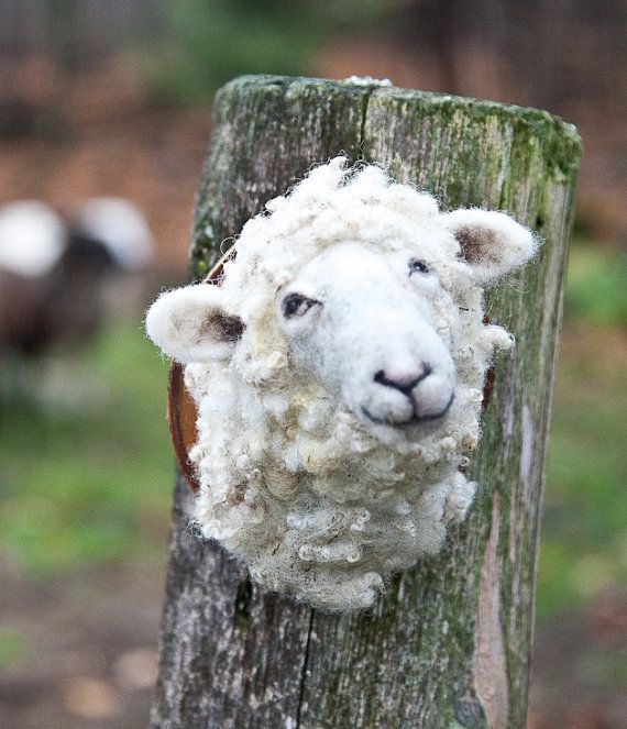 Polly the cutest sheep by fauxfauna