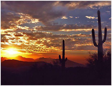 Arizona: Arizona Sunset, Favorite Places, Desert Sunset, Sunsets, Beautiful Places, Sunrise Sunset, Az Sunset, Arizona Desert