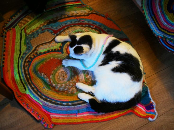 """""""The cat sat on the mat"""" - Our cat to be precise. The mat - French Knitting by Peter Coombe. The mat belongs to the cat, no mistake!"""