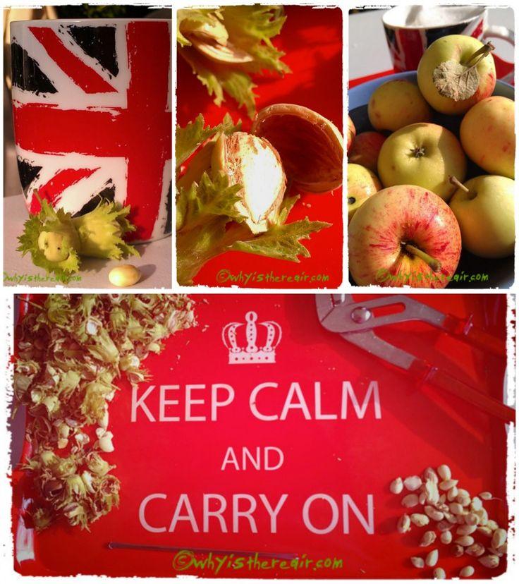 Great #Recipe for a #Thermomix Apple-Hazelnut #Chutney!
