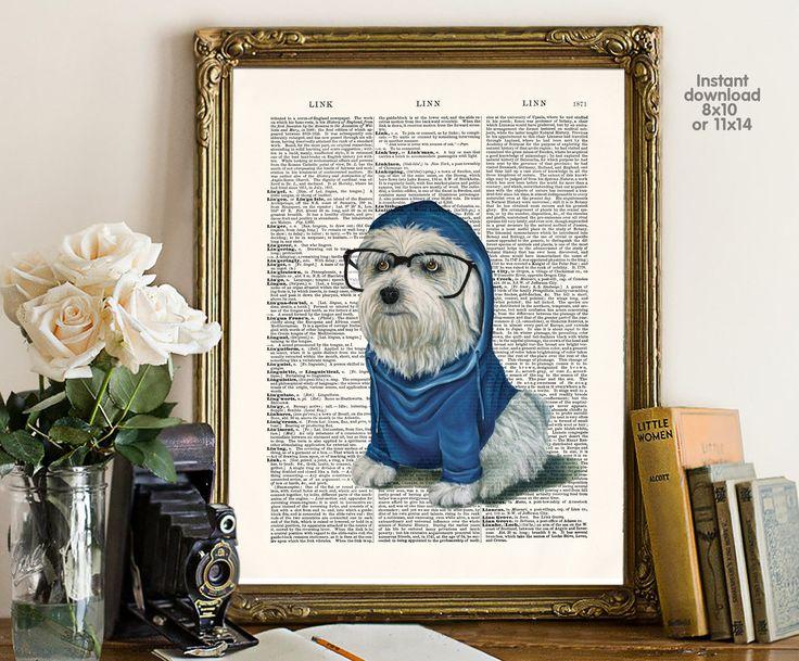 Best 20 Hipster Dog Ideas On Pinterest Dog Photos Dog