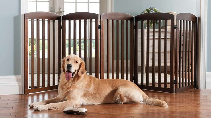 "36""H Freestanding Wooden Pet Gate. Marshall's had these in white, w/fewer panels. They looked great."
