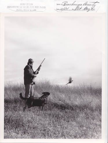 Upland Game Hunting: A tradition in most parts of the United States