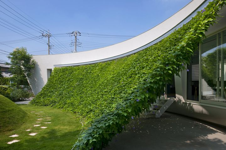 This house in Japan has plants sustained by a net.