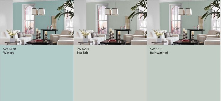 Sherwin Williams: Watery vs Sea Salt vs Rainwashed | Real life results: Went with Sea Salt in a bright room with natural light. It has a definite green undertone that changes with the color of the light bulbs.