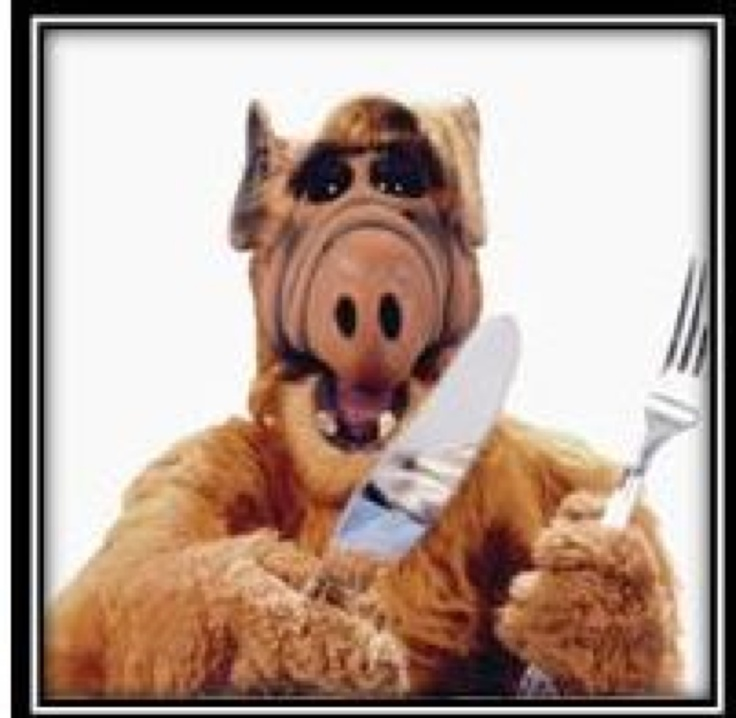 alf gets ready for dinner pinned from pinto for ipad - Alf Halloween Episode
