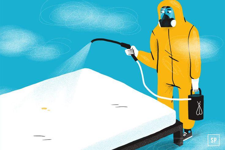 Verschmutzte Matratze selber reinigen oder doch lieber zur Matratzenreinigung damit?