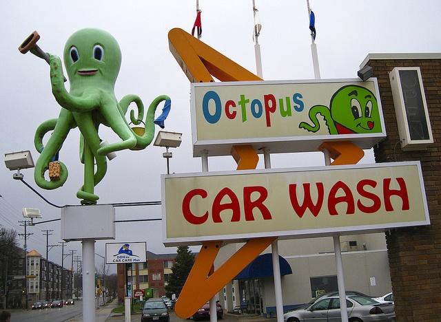Octopus Car Wash Orlando: 100 Best Octopi Images On Pinterest