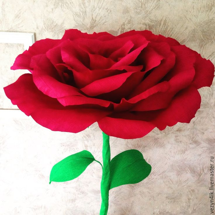 Купить Бумажные розы стоящие на полу - кремовый, роза из бумаги, бумажная роза, гигантская роза
