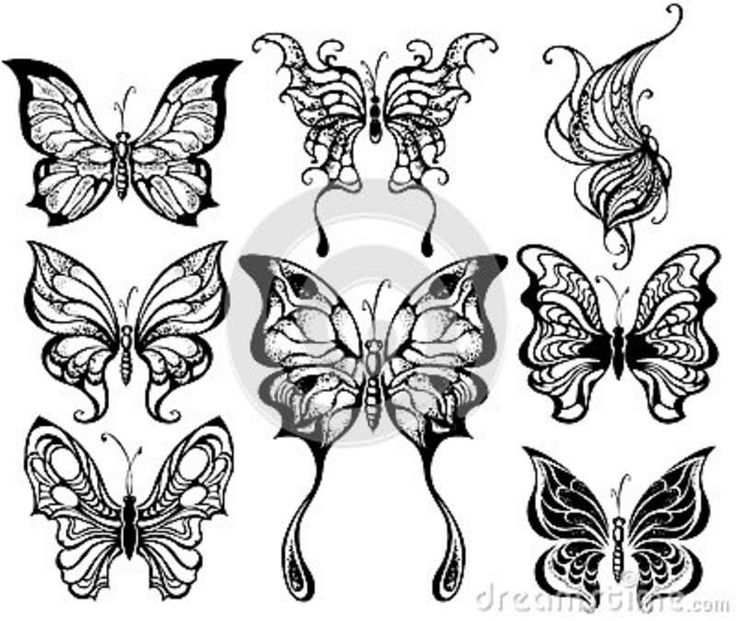 http://thumbs.dreamstime.com/z/silhouettes-exotic-butterflies-26804029.jpg