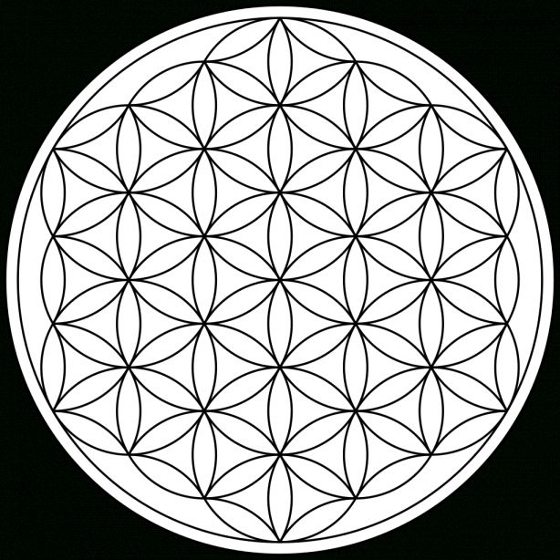 18 Flower Of Life Transparent Png Png Image Icon Asset Com Flower Of Life Tattoo Flower Of Life Sacred Geometry Tattoo