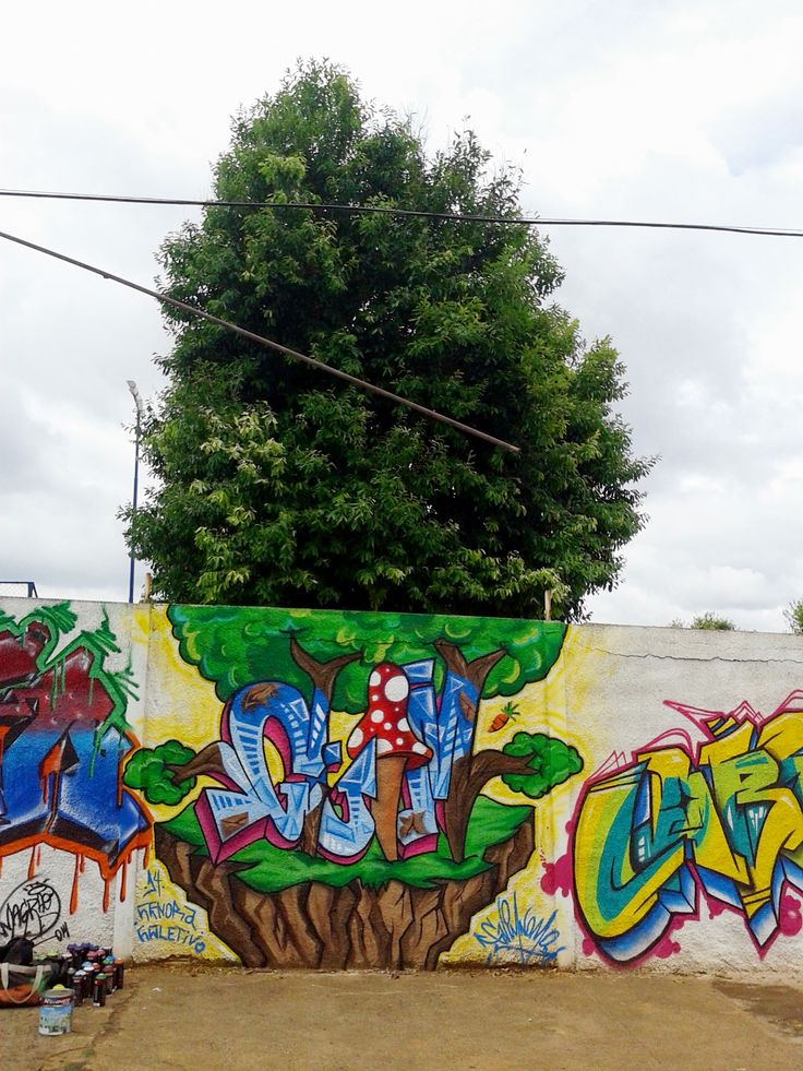Graffiti realizado no 2º Mutirão de Graffiti em Mirassol-SP. Artista : Leonardo César Francischetti (GUIMNOMO) - CGC - Cenora Coletivo .  Mirassol, São Paulo , Brasil .  2014