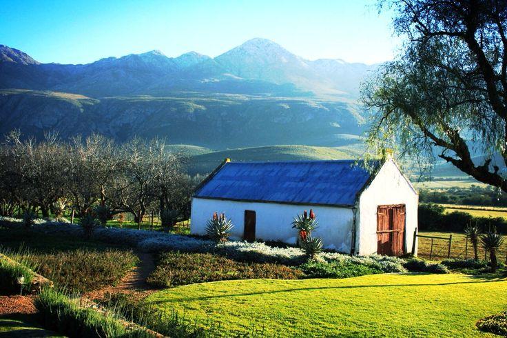 South Africa, Oudtshoorn
