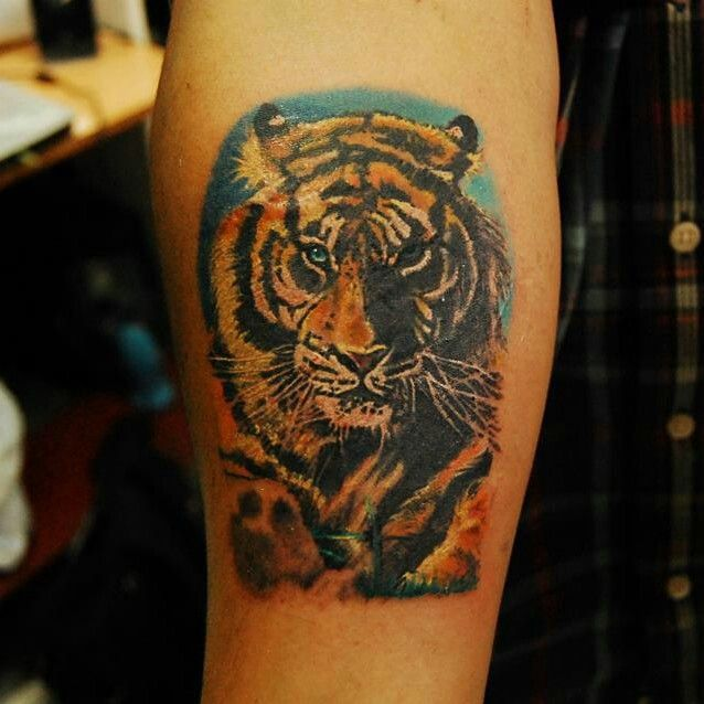 #tiger #tattoo #color by pincel tattoo