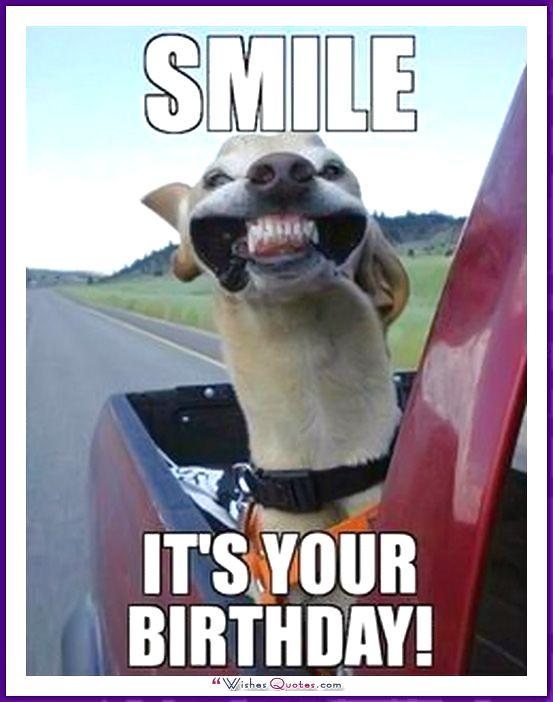 Funny Dog Birthday Meme: Smile! It's your birthday!