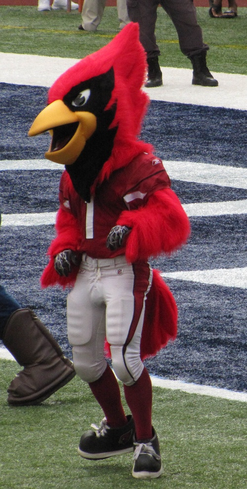 """Mascots at NFL Pro Bowl Ohana Day make everything """"funner"""" - kaytee100's posterous"""