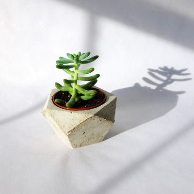 i just like the style/idea of these planters :]