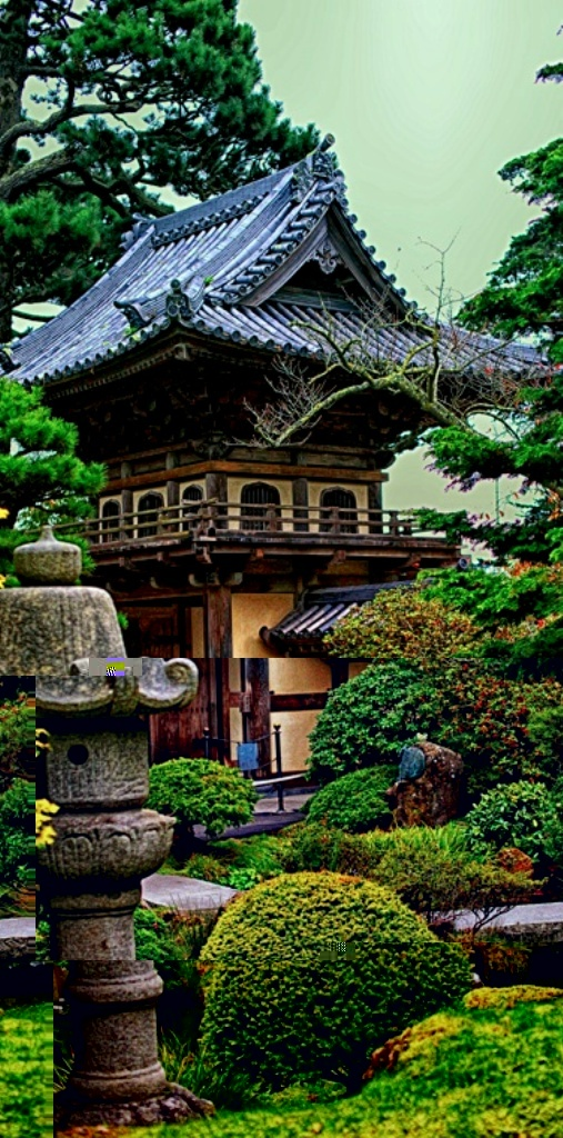 Beautiful Japanese Tea Garden