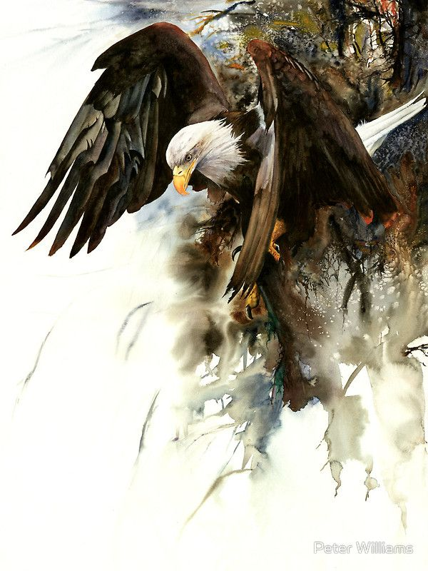 """""""High And Mighty"""" by Peter Williams.  From an original watercolour painting by Peter Williams."""