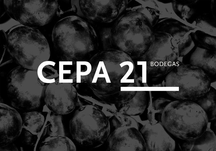 Cepa 21 - Imagen Corporativa