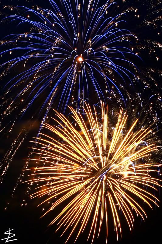 Fireworks from Ocean City, NJ - Canon Digital Photography Forums