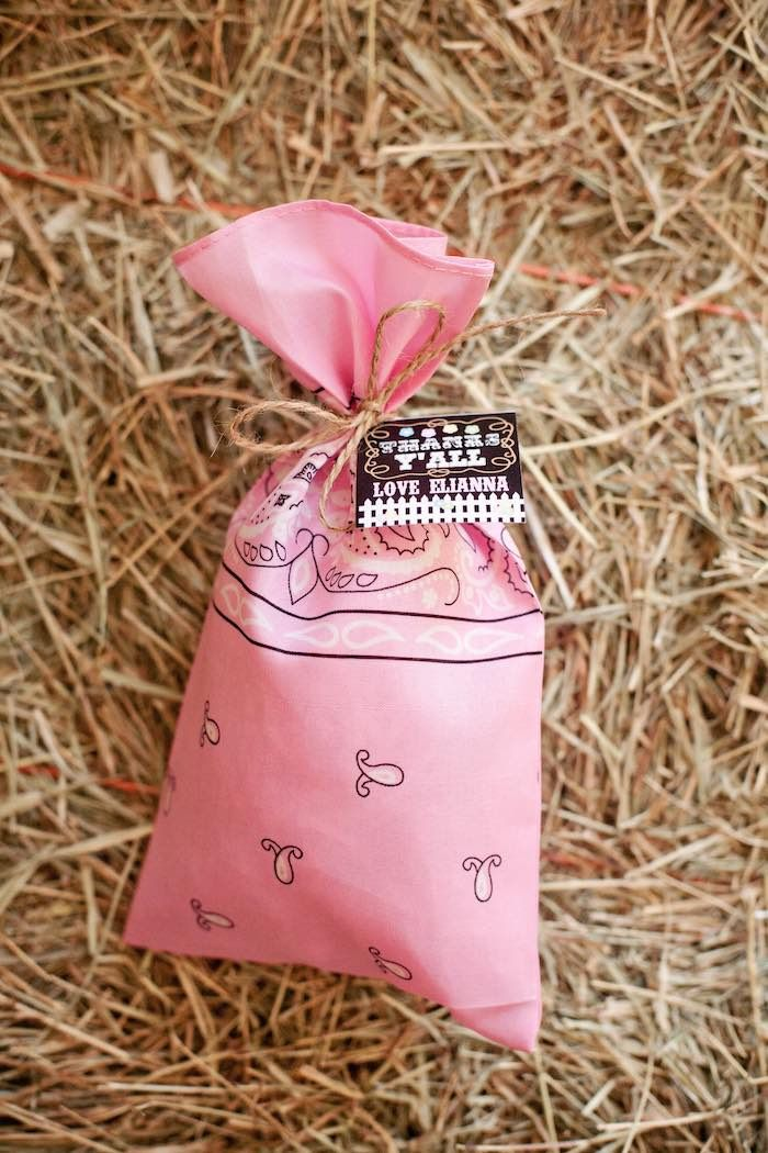 Shabby Chic Cowgirl Party- bandana goodie bag!