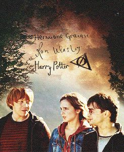 harry potter - harry, ron and hermione gif